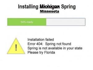 MNspring404