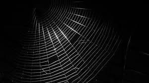 dark-web-1